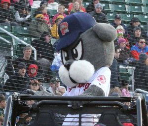 Slugger has spent the season riding on a jeep instead of working on his base running.