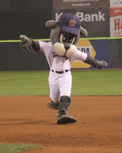Slugger futilely tries to fly