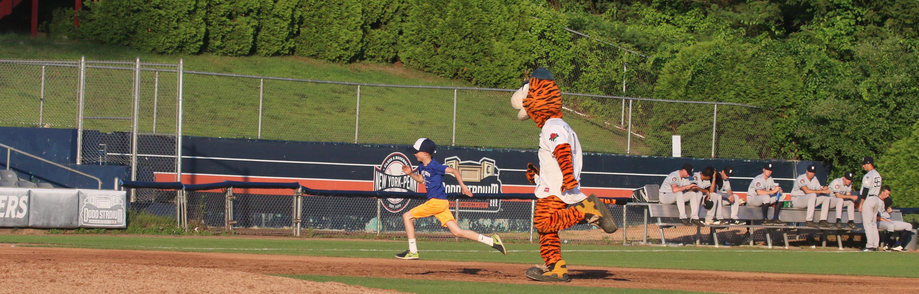 Ct The Tiger In Trouble On The Bases